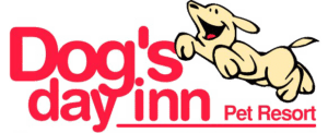 Kingwood TX Overnight Doggy Day Care